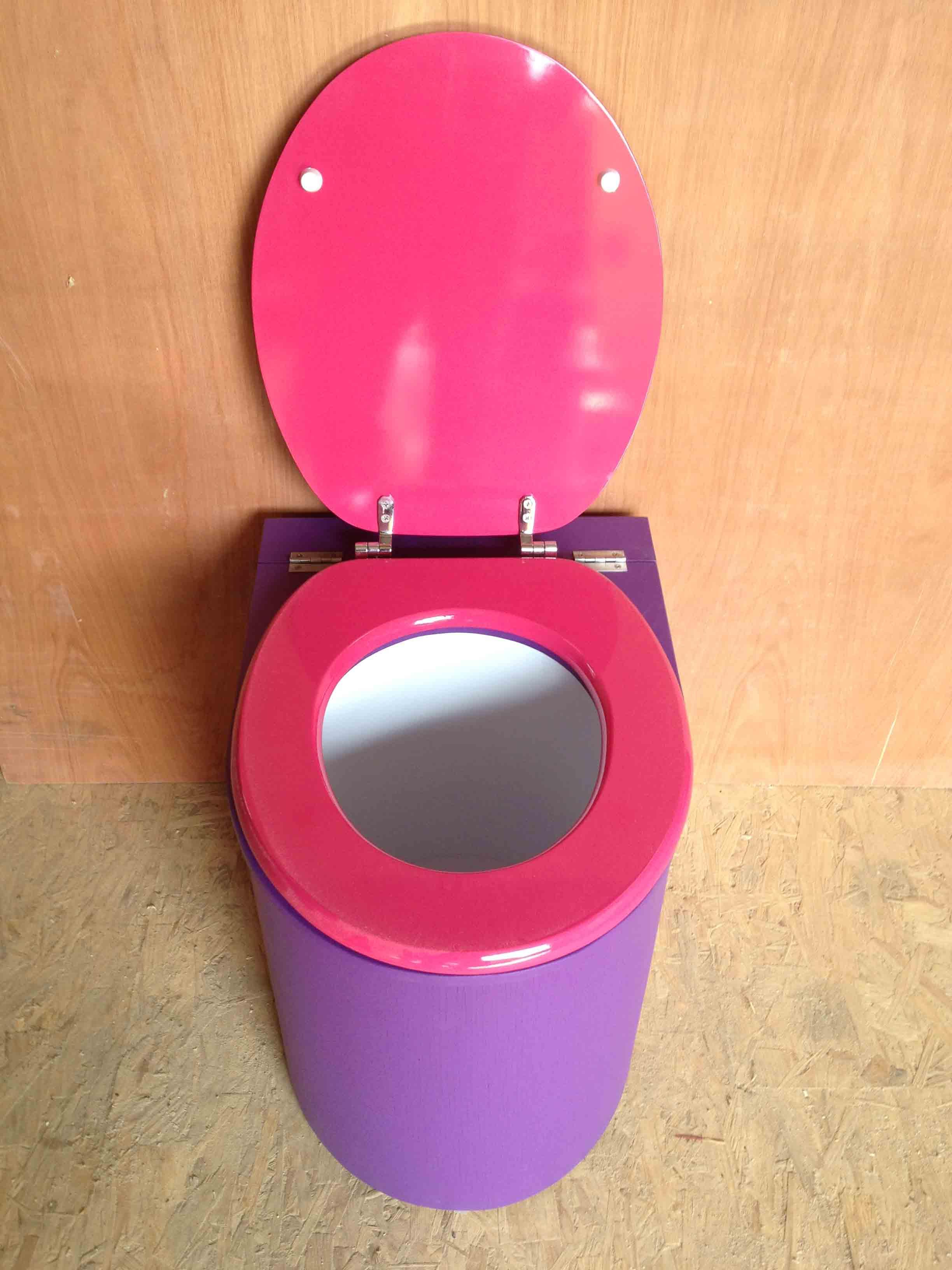 Toilette seche design violet